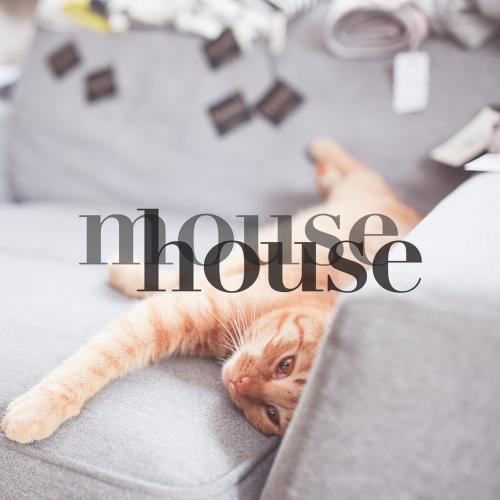 mousehouse, fot. Ewa Przedpełska